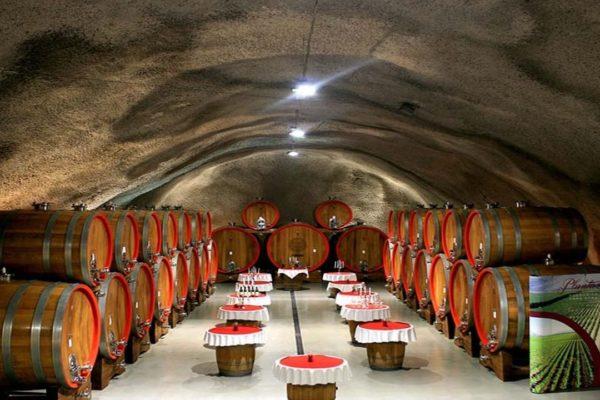 Cave à vin Monténégro